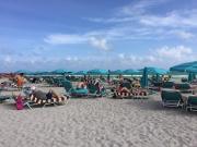 Les transats et les parasols sur la plage